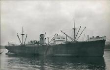 'BANGOR BAY' (ex War Spey & Kerry) Built 1919 Caledon Shipbuilding  qq 872