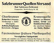 Bad Salzbrunn Schlesien SALZBRUNNER QUELLEN- VERSAND  Historische Reklame v.1920
