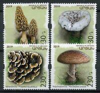 Karabakh Republic of Artsakh 2019 MNH Mushrooms 4v Set Fungi Nature Stamps