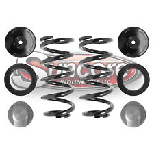 Airmatic Rear Air to Coil Spring Conversion Kit 2006 Mercedes CLS500 - W219