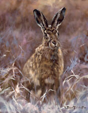 Hare Christmas Cards pack of 10 by John Trickett. C417X