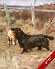 RABBIT HUNTING LAB DOG WITH HIS CATCH ANIMAL ART PAINTING REAL CANVAS PRINT