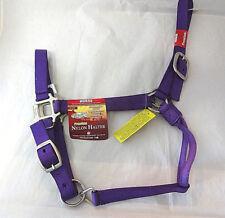Premium Nylon Horse Halter Purple Brushed Nickel Buckles NWT Tough 1 Adjustable
