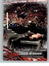 2017 WWE Road to Wrestlemania #46 Shane McMahon