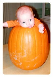 Funny Congratulations New Baby Boy Or Girl Pumpkin Hallmark Greeting Card