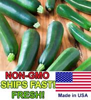 25 Award Winning Black Beauty Zucchini Squash Seeds-R 089