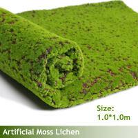 1m 1m Micro Paysage Accrochage Mural Artificiel Mousse Plante Herbe Gazon