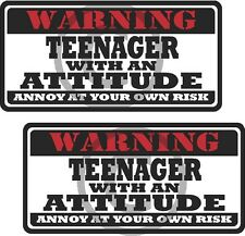"2 - 3"" Teenager Teen Funny Warning Tools Auto Motorcycle Decal Hat Sticker WS1"