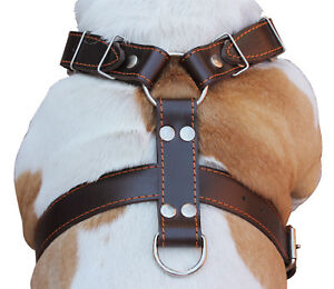 "Dog Harness 30""-35"" chest Genuine Leather German Shepherd Doberman Pitbull"