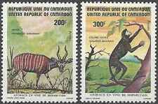 Timbres Animaux Cameroun 698/9 ** lot 17758