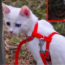 1x Neu Katzen Leine Halsband Katzenleine Klein Haustier Hunde Katzengeschirr
