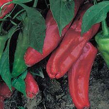 Ungarische Marconi Paprika, Ideal zum Füllen oder zum Grillen, 10 Samen