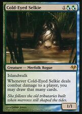 Cold-Eyed selkie | ex | Eventide | Magic MTG