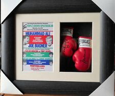Muhammad Ali Vs Joe Bugner Mini Signed Boxing Gloves Framed