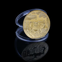 2019 Lucky Pig Commemorative Coin Year of Pig Delivers Money Coins Collect LA