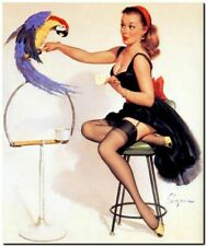 "Vintage GIL ELVGREN Pinup Girl CANVAS PRINT Macaw Cracker 8X10"""
