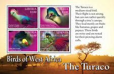 Liberia-2016 West Africa (Turaco) Birds on Stamps Sheet of 4 MNH