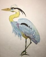 Blue heron Oil On Board Florida Painting