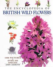 THE ENCYCLOPEDIA OF BRITISH WILD FLOWERS John AKEROYD