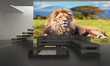 LION ON SAVANAH Wall Mural Photo Wallpaper GIANT DECOR Paper Poster Free Paste