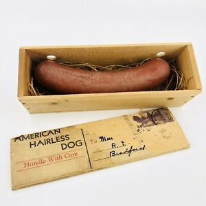 Antique American Hairless Dog Novelty Joke Hot Dog Gag Gift 3 Cent Postage