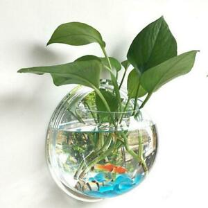 Wall Mounted Fish Tank Bowl Bubble Aquarium Hanging Terrarium Bowl Family Decor