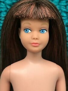Vintage Barbie HTF TWO TONE SKIPPER & BONUS