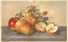 CP ILLUSTREE FRUITS - POMMES POIRES MURES
