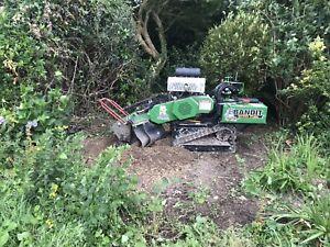 Stump Grinding Service Across Sussex, Surrey, Kent & Hampshire