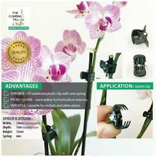 Small Orchid Plant Clips in DARK GREEN plastic. Stake Phalaenopsis & Dendrobium