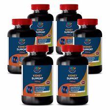 Healthy Urine - KIDNEY SUPPORT - Bladder Health - Kidney Boost - 6 B 360 Ct