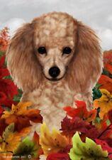 Fall House Flag - Apricot Poodle 13016