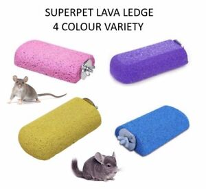 Kaytee Chinchilla Lava Ledge  (Free Shipping in USA)