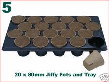 80mm dia Jiffy Plant Pot (x20) + custom tray (5 LOTS)