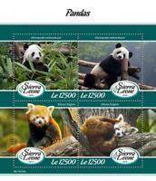 Sierra Leone - 2019 Panda Bears - 4 Stamp Sheet - SRL190102a