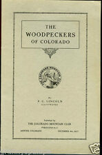 Woodpeckers of Colorado-1917-Flickers-Three Toed-Red Naped Sapsucker-Hairy