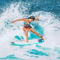 SURFING Dropshipping WEBSITE Business For Sale|FREE Domain|Hosting|Traffic