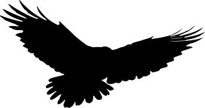RAVEN Bird Vinyl Wall Stickers Choice of Size & Colour Self Adhesive decal #1