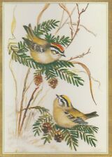 New Unused Tasha Tudor Two Birds Christmas Card with Envelope by Caspari