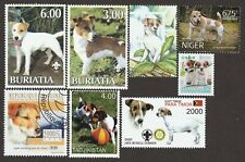 Jack Russell Terrier *Int'l Dog Postage Stamp Art Collection* Unique Gift *