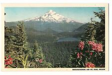 Pink RHODODENDRONS Flowers and MT. HOOD Lost Lake Portland OREGON Postcard OR