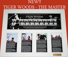 TIGER WOODS THE GOLF MASTER SIGNED MEMORABILIA FRAMED LIMITED EDITION w/ C.O.A