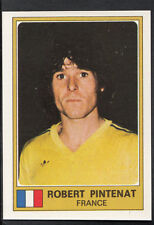 Football Sticker - Panini Euro Football 1976 - No 103 - Robert Pintenat - France