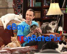 JIM PARSONS - The Big Bang Theory's Sheldon Cooper - 8x10 Photo