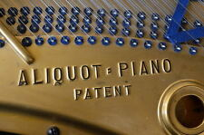 Blüthner Flügel 210cm + Aliquot Patent