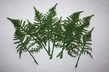 """12 x Verde Artificiale asparagi Fern FOGLIE VELLUTATE finitura 16 CM / 6.5 """""""