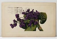 Bouquet of Purple Pansies 1912 to Redwood Grove California Postcard A17