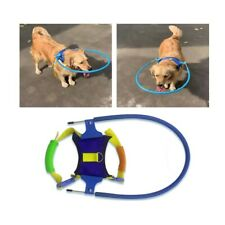 New listing Safety Blind Dog Harness/Vest Ring Prevent Collide Pet Puppy Neck Xxs-L Us