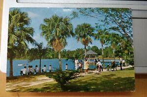 Singapore Vintage Postcard - McRithie Reservoir Singapore 麦里艺蓄水池