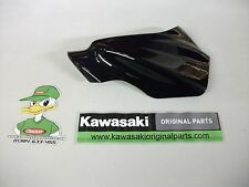 Kawasaki ER6N L/H Scheinwerfer Panel Ebenholz 14091-0458-h8